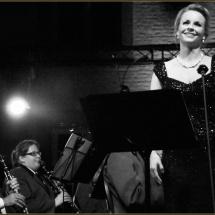 Foto_Albums_Concerten13
